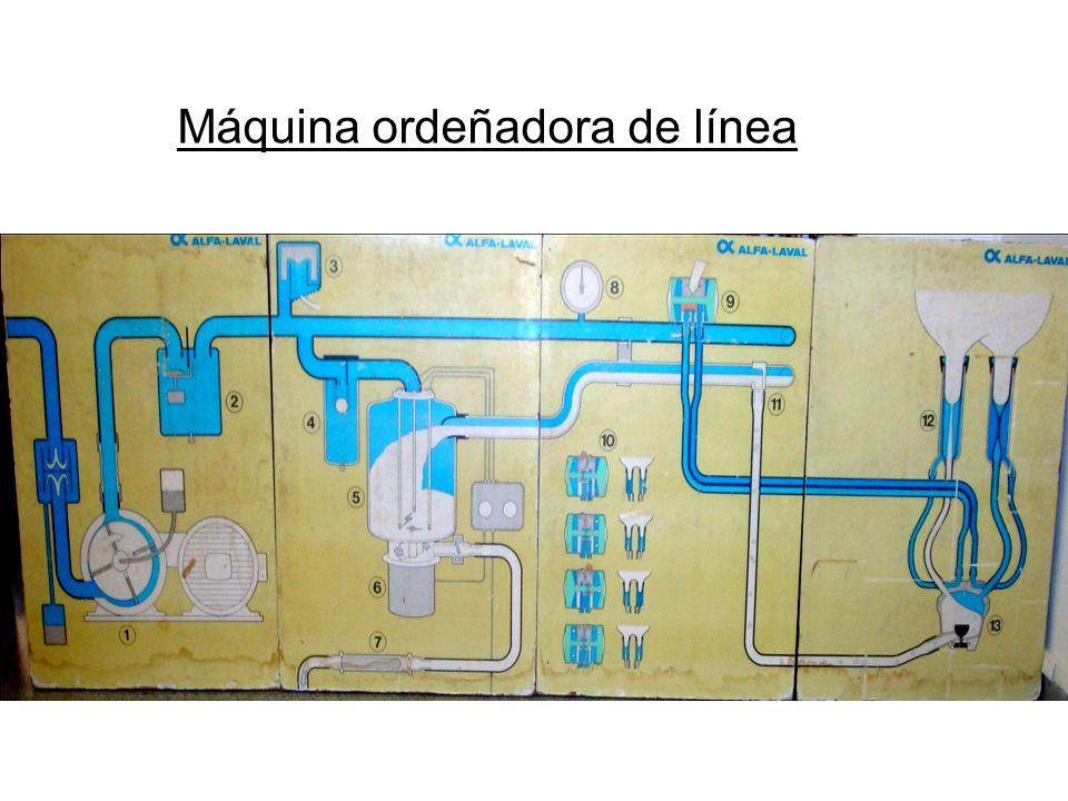 Máquina ordeñadora de línea