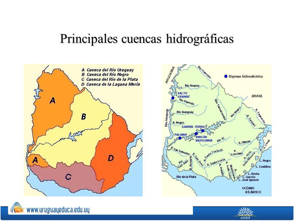 Principales cuencas hidrográficas