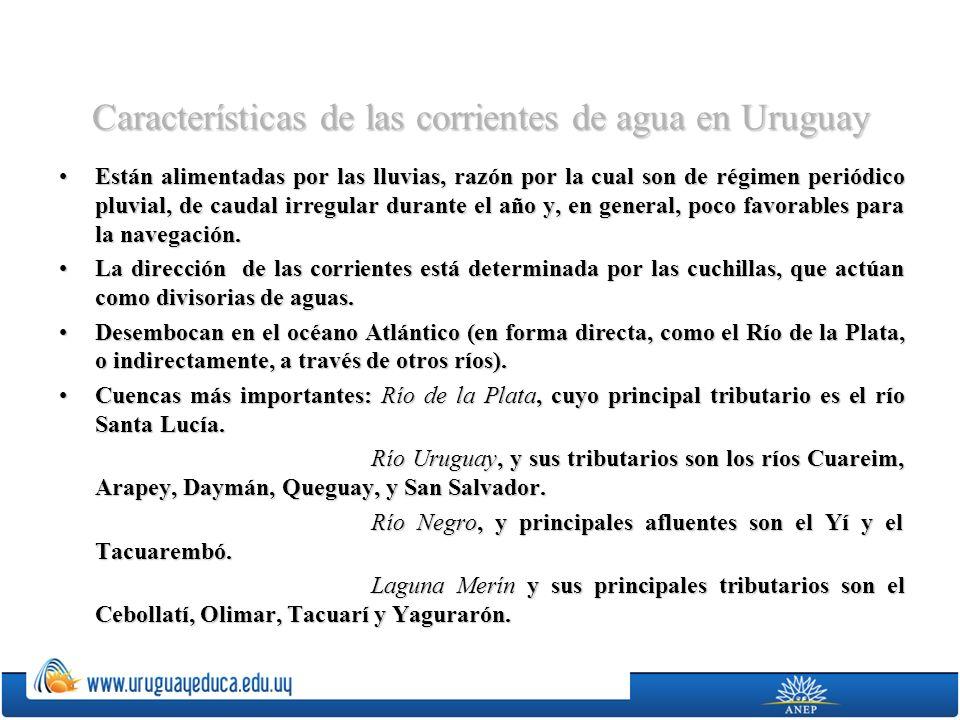 Características de las corrientes de agua en Uruguay Están alimentadas por las lluvias, razón por la cual son de régimen periódico pluvial, de caudal
