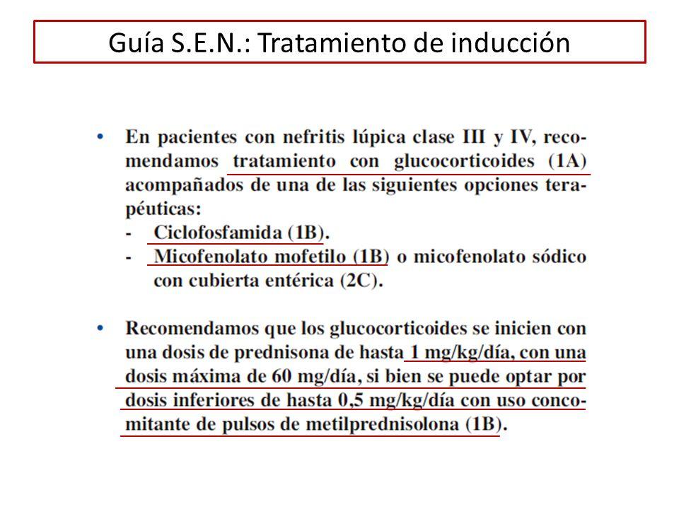 Guía S.E.N.: Tratamiento de inducción
