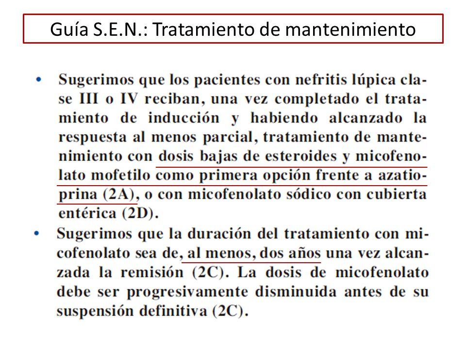 Guía S.E.N.: Tratamiento de mantenimiento