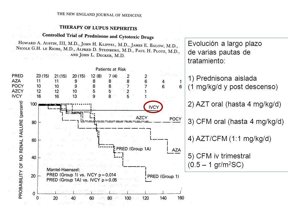 Evolución a largo plazo de varias pautas de tratamiento: 1) Prednisona aislada (1 mg/kg/d y post descenso) 2) AZT oral (hasta 4 mg/kg/d) 3) CFM oral (