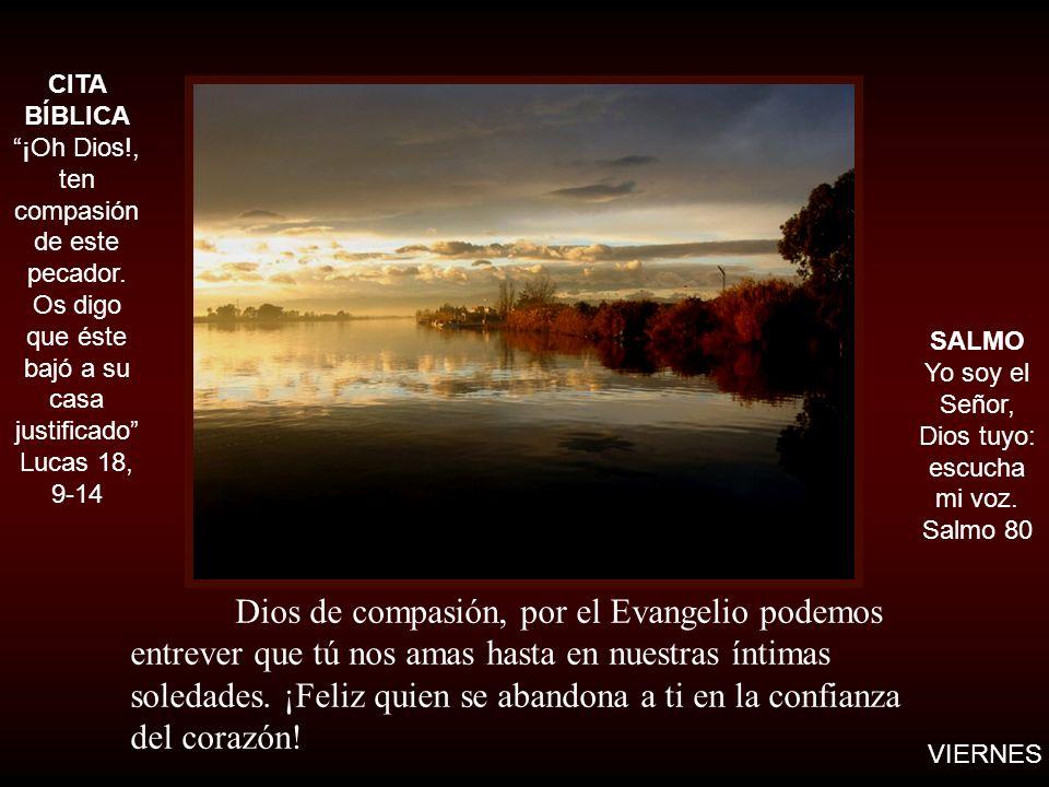 Dios de compasión, por el Evangelio podemos entrever que tú nos amas hasta en nuestras íntimas soledades. ¡Feliz quien se abandona a ti en la confianz