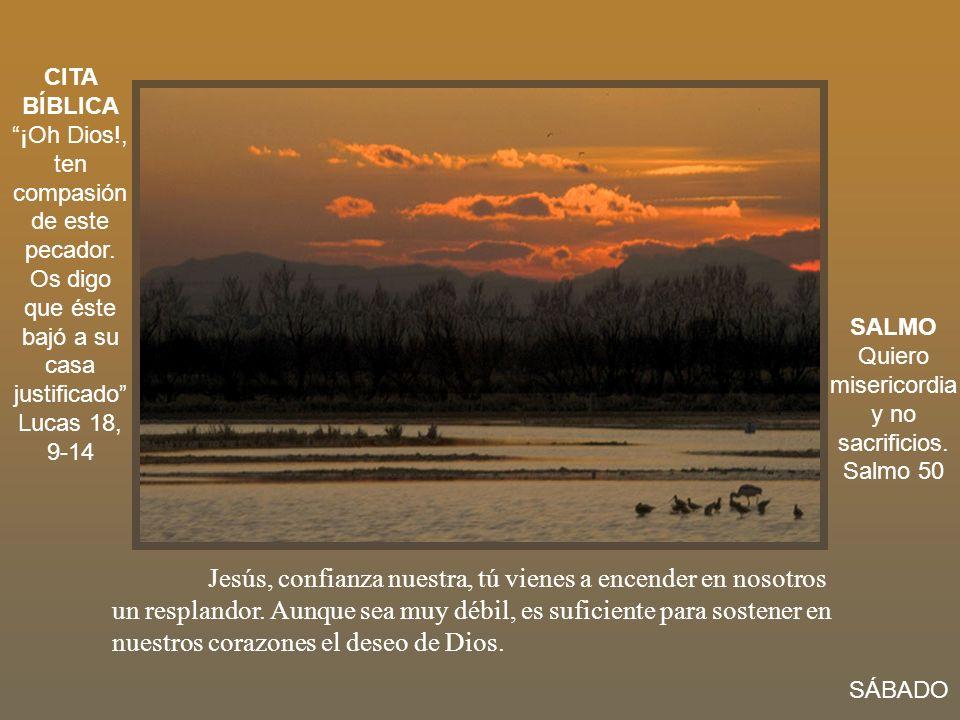 Jesús, confianza nuestra, tú vienes a encender en nosotros un resplandor. Aunque sea muy débil, es suficiente para sostener en nuestros corazones el d