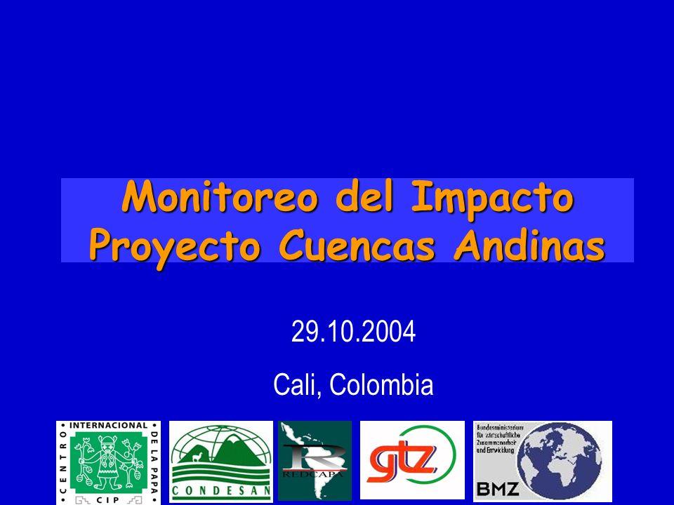 Monitoreo del Impacto Proyecto Cuencas Andinas 29.10.2004 Cali, Colombia