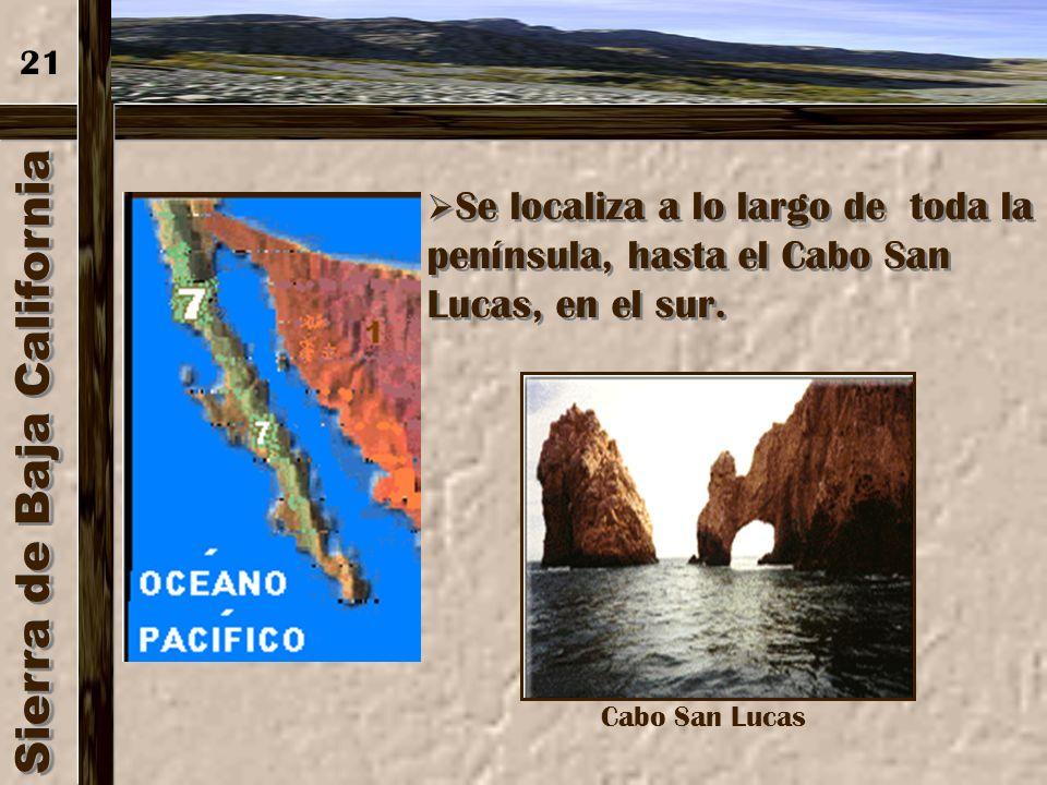 Sierra Madre de Oaxaca 20 Tiene unos 300 km. de extensión, se localiza en la S.M. Oriental entre el Pico de Orizaba o Citlaltépetl y el Istmo de Tehua
