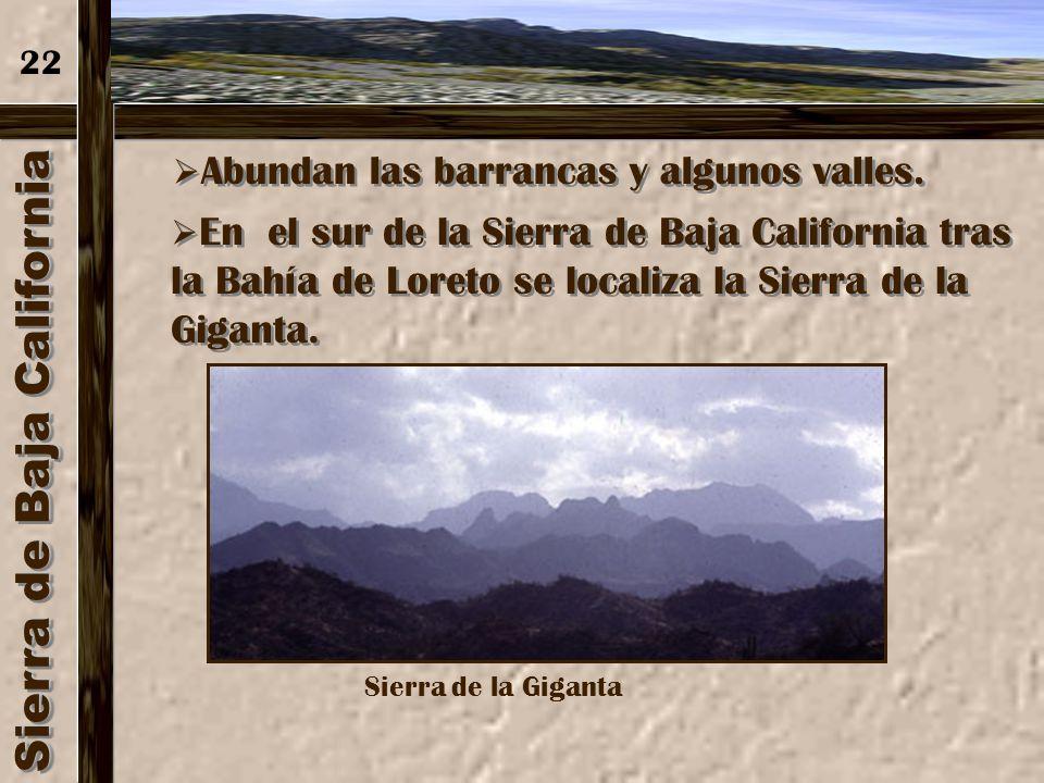 Sierra de Baja California Se localiza a lo largo de toda la península, hasta el Cabo San Lucas, en el sur. 21 Cabo San Lucas