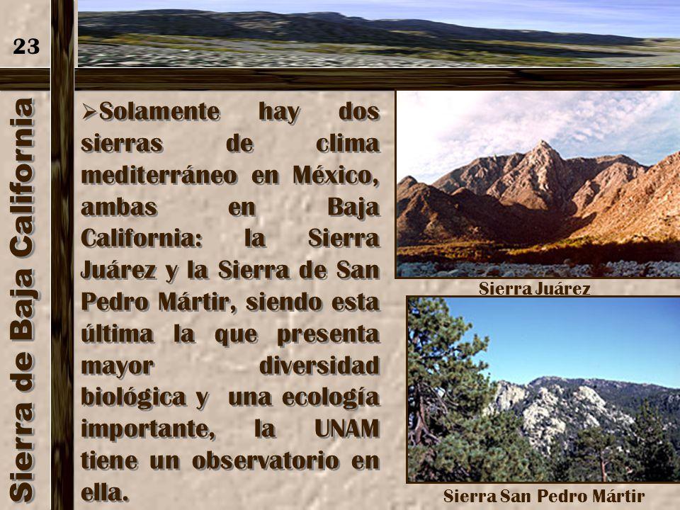 Sierra de Baja California En el sur de la Sierra de Baja California tras la Bahía de Loreto se localiza la Sierra de la Giganta. 22 Sierra de la Gigan