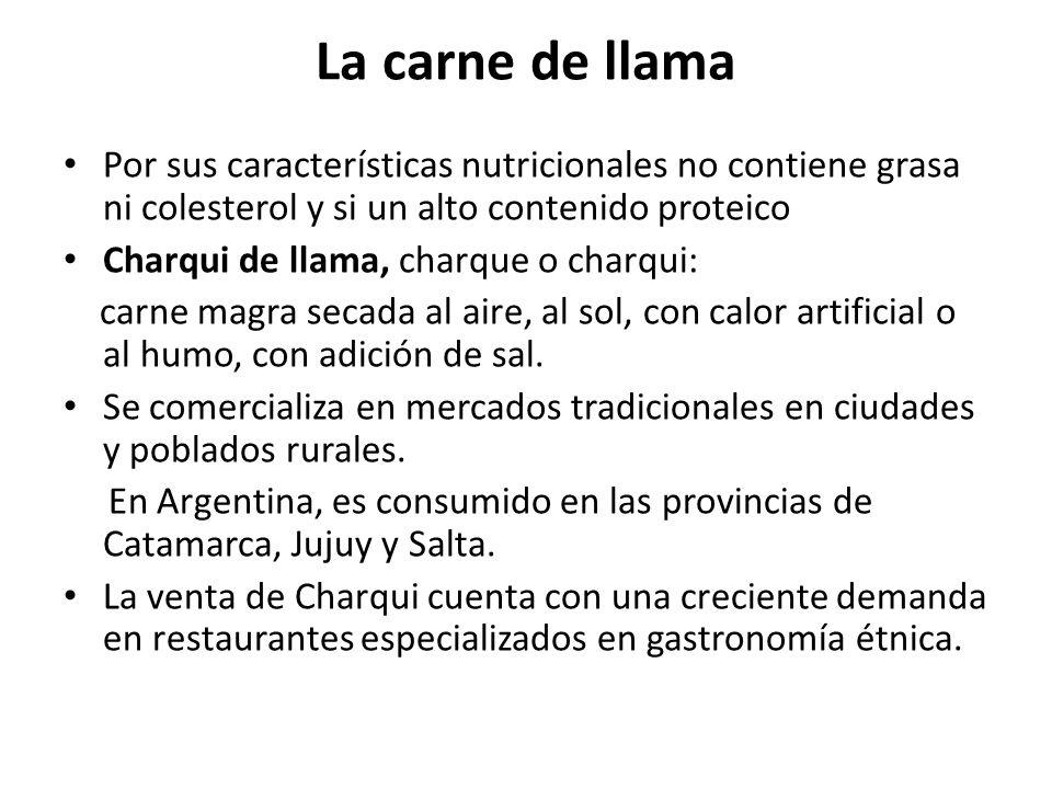 La carne de llama Por sus características nutricionales no contiene grasa ni colesterol y si un alto contenido proteico Charqui de llama, charque o ch