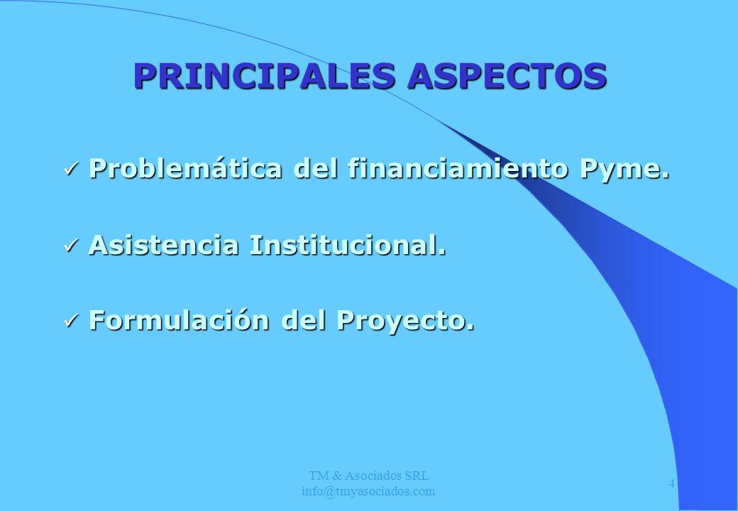 TM & Asociados SRL info@tmyasociados.com 4 PRINCIPALES ASPECTOS Problemática del financiamiento Pyme. Problemática del financiamiento Pyme. Asistencia