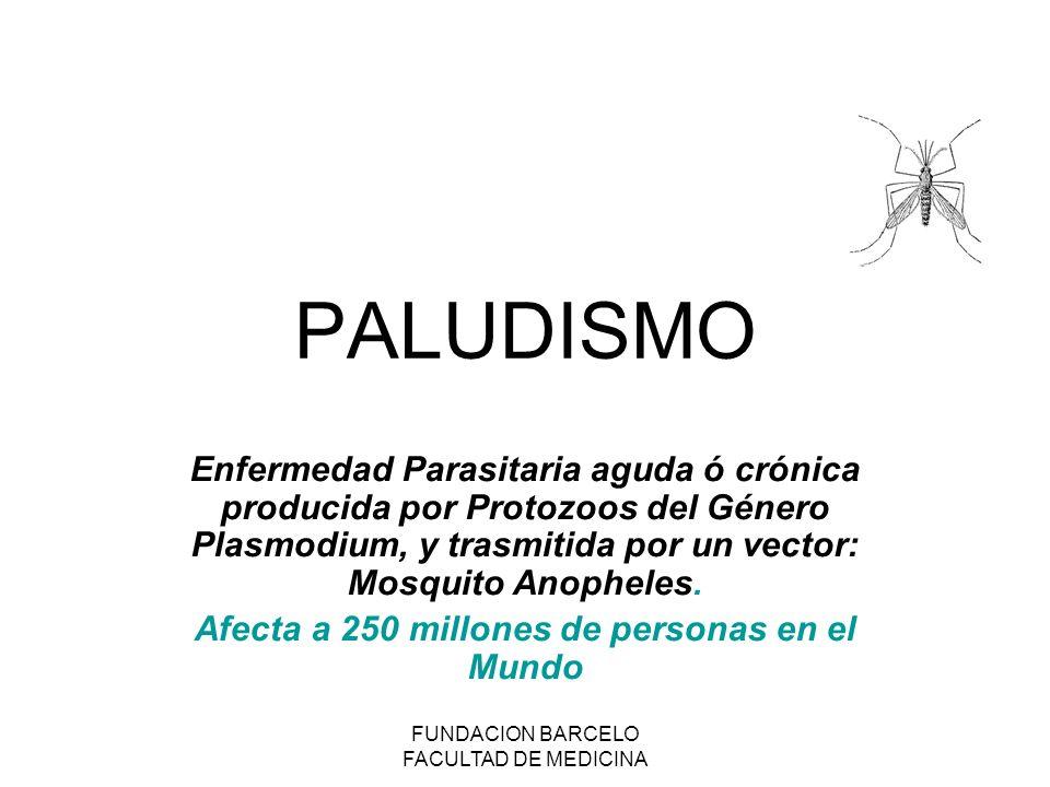 FUNDACION BARCELO FACULTAD DE MEDICINA PALUDISMO Enfermedad Parasitaria aguda ó crónica producida por Protozoos del Género Plasmodium, y trasmitida por un vector: Mosquito Anopheles.