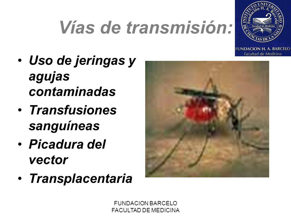 FUNDACION BARCELO FACULTAD DE MEDICINA Vías de transmisión: Uso de jeringas y agujas contaminadas Transfusiones sanguíneas Picadura del vector Transpl
