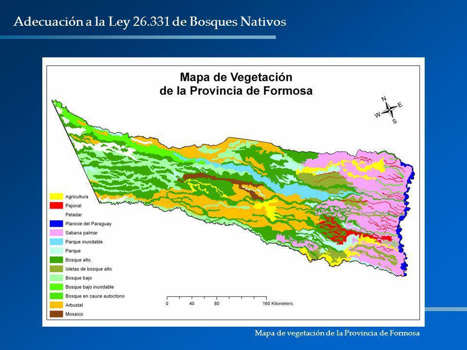 Adecuación a la Ley 26.331 de Bosques Nativos Mapa de vegetación de la Provincia de Formosa
