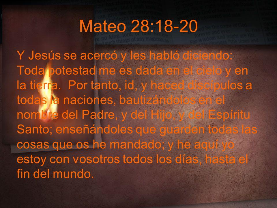 Mateo 28:18-20 Y Jesús se acercó y les habló diciendo: Toda potestad me es dada en el cielo y en la tierra.
