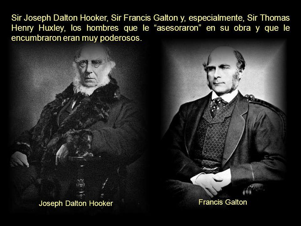 Darwin fue magníficamente acogido por los poderosos de su país y de Norteamérica. (El crecimiento de un gran negocio, es simplemente la supervivencia