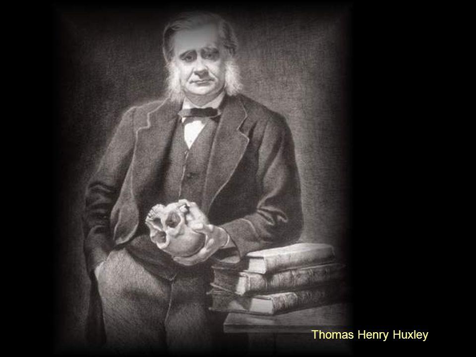 Sir Joseph Dalton Hooker, Sir Francis Galton y, especialmente, Sir Thomas Henry Huxley, los hombres que le asesoraron en su obra y que le encumbraron