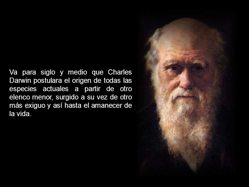 EVOLUCIÓN, IGUAL A DARWINISMO