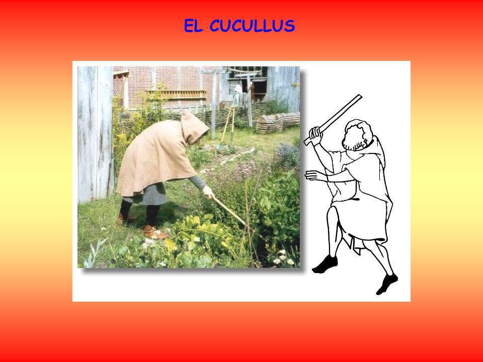 EL CUCULLUS