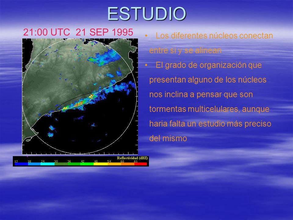 ESTUDIO 21:00 UTC 21 SEP 1995 Los diferentes núcleos conectan entre si y se alinean El grado de organización que presentan alguno de los núcleos nos i