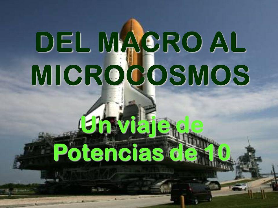 . DEL MACRO AL MICROCOSMOS Un viaje de Potencias de 10