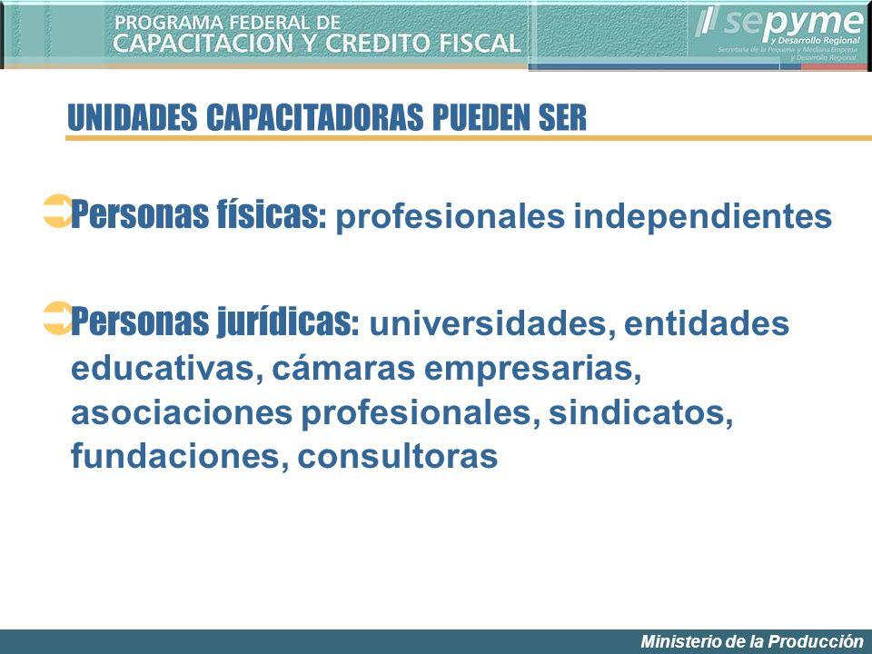 Ministerio de la Producción Personas físicas: profesionales independientes Personas jurídicas: universidades, entidades educativas, cámaras empresaria