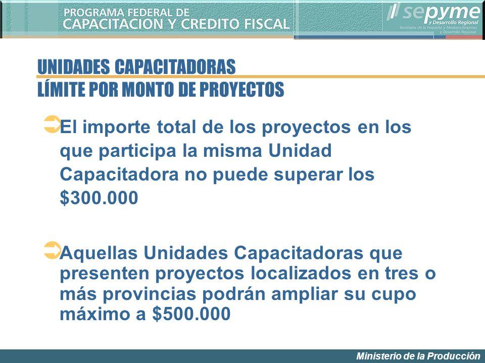 Ministerio de la Producción El importe total de los proyectos en los que participa la misma Unidad Capacitadora no puede superar los $300.000 Aquellas
