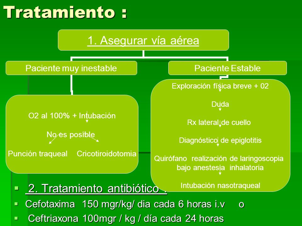 Tratamiento : 2.Tratamiento antibiótico : 2.