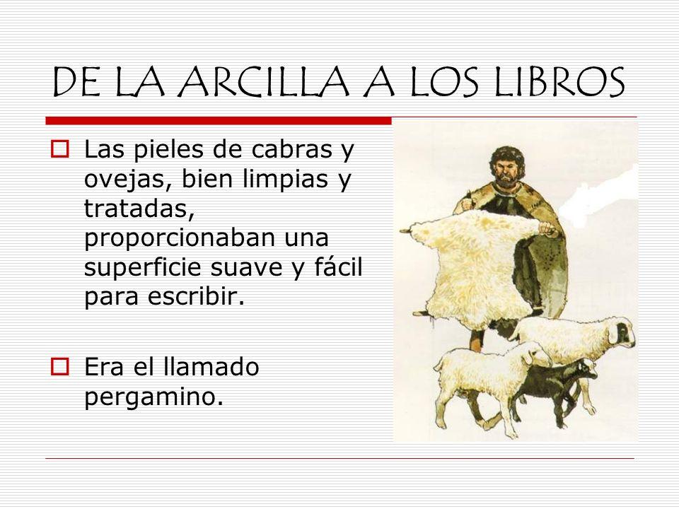 DE LA ARCILLA A LOS LIBROS Las pieles de cabras y ovejas, bien limpias y tratadas, proporcionaban una superficie suave y fácil para escribir. Era el l