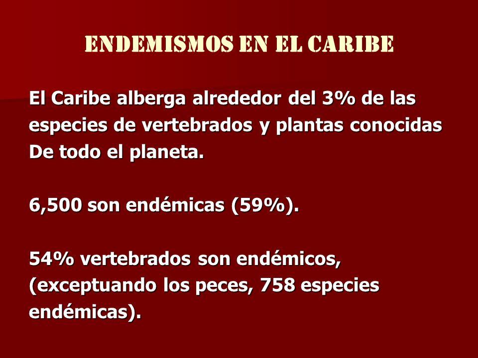 ENDEMISMOS en el caribe El Caribe alberga alrededor del 3% de las especies de vertebrados y plantas conocidas De todo el planeta. 6,500 son endémicas