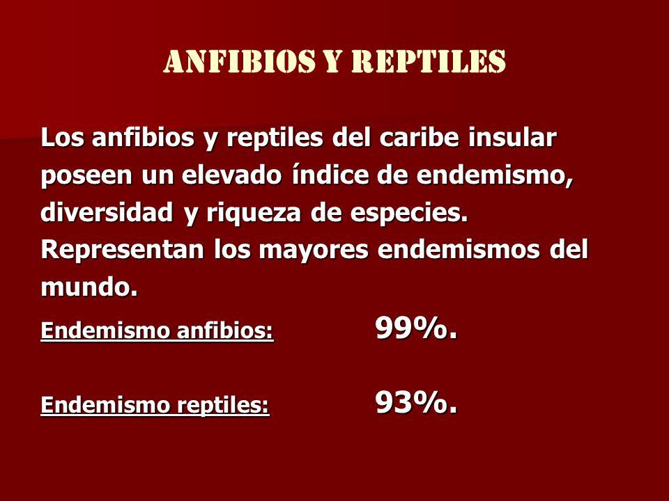 anfibios y reptiles Los anfibios y reptiles del caribe insular poseen un elevado índice de endemismo, diversidad y riqueza de especies. Representan lo