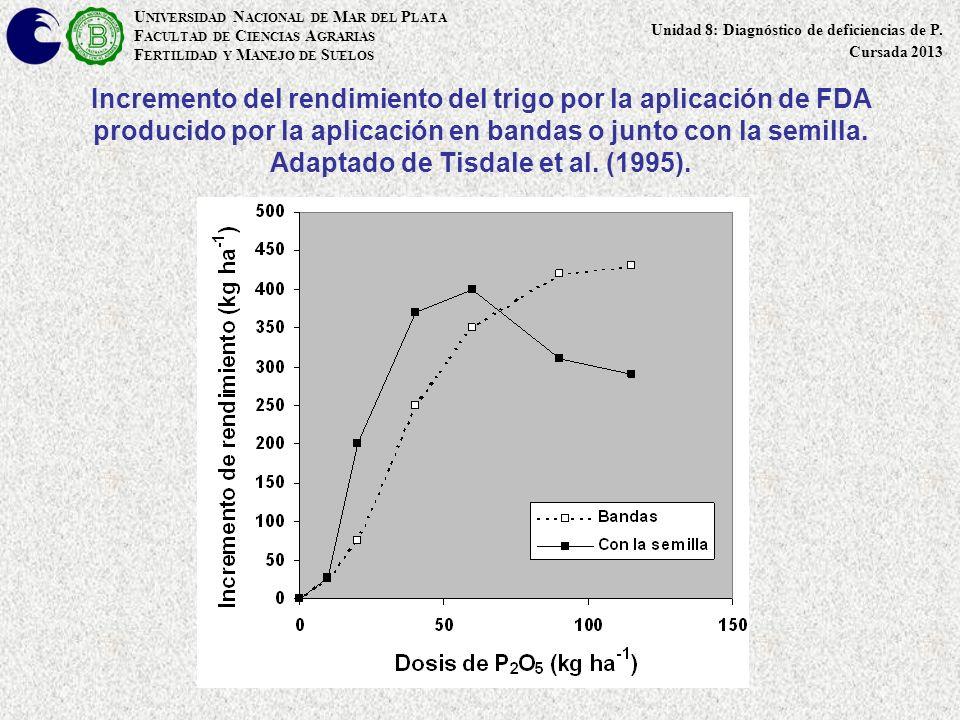 Incremento del rendimiento del trigo por la aplicación de FDA producido por la aplicación en bandas o junto con la semilla. Adaptado de Tisdale et al.