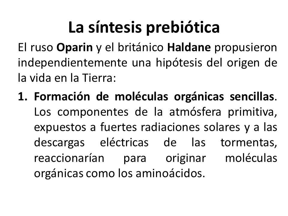 La síntesis prebiótica El ruso Oparin y el británico Haldane propusieron independientemente una hipótesis del origen de la vida en la Tierra: 1.Formac