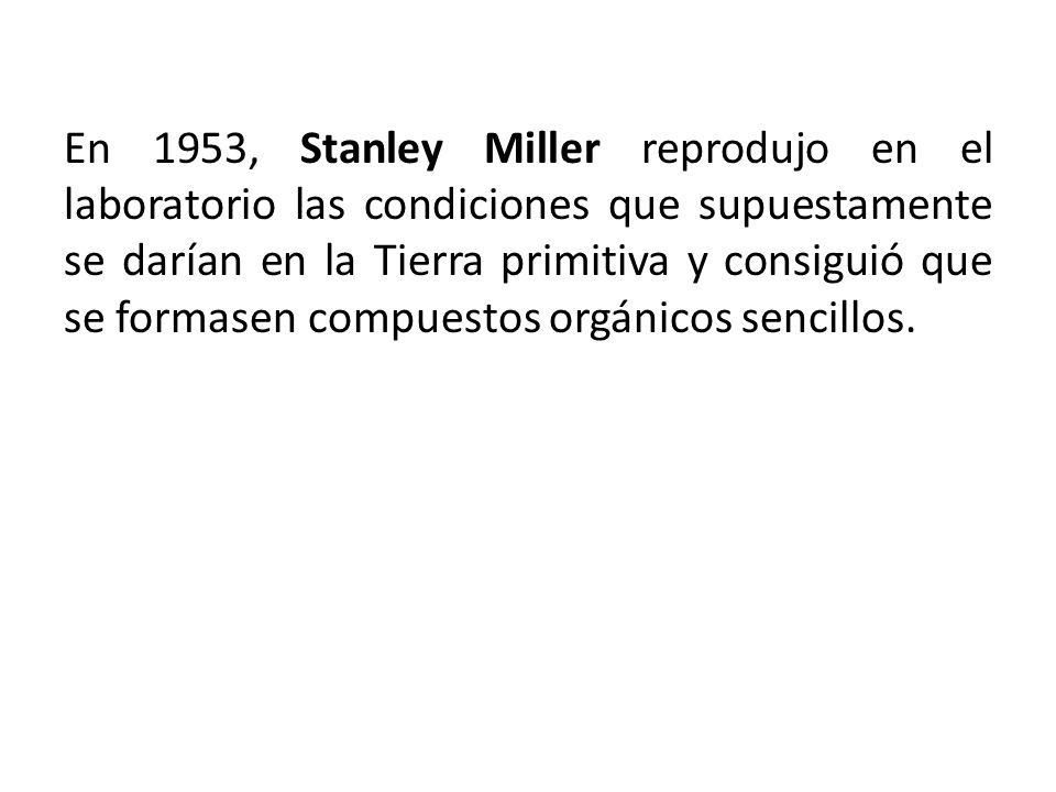 En 1953, Stanley Miller reprodujo en el laboratorio las condiciones que supuestamente se darían en la Tierra primitiva y consiguió que se formasen com