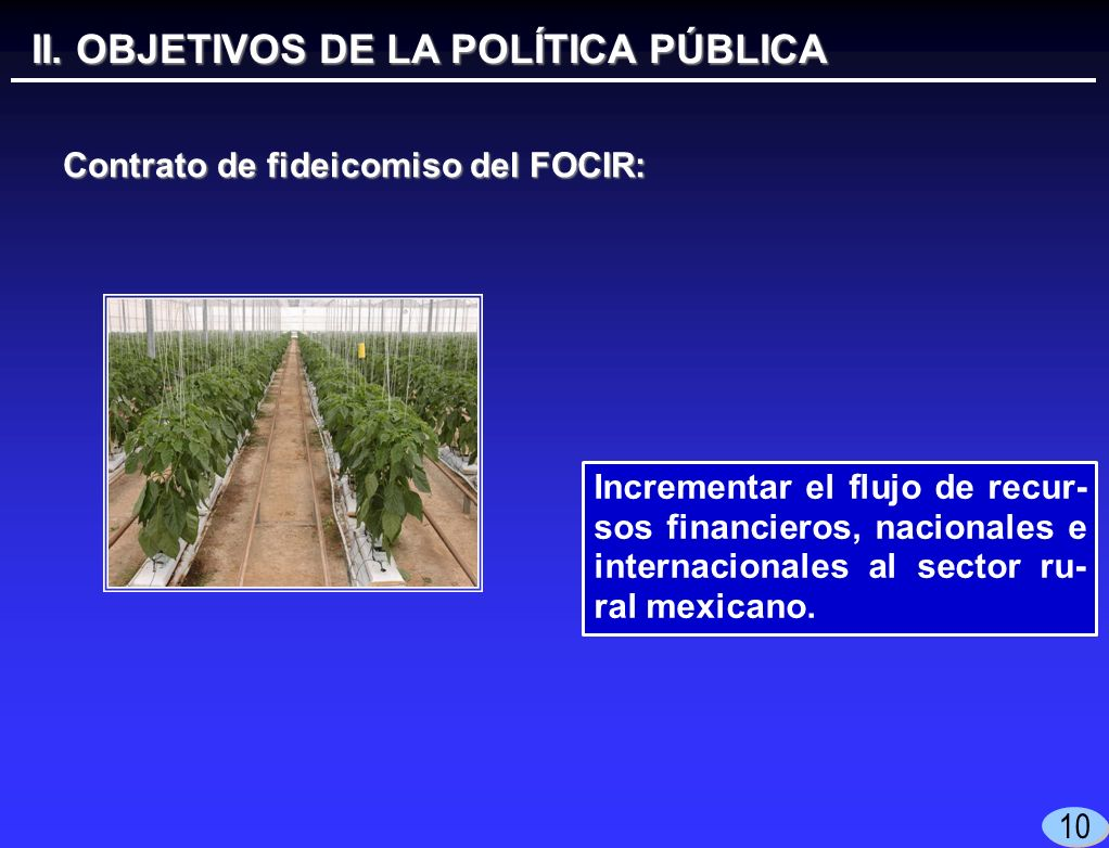 10 Incrementar el flujo de recur- sos financieros, nacionales e internacionales al sector ru- ral mexicano.