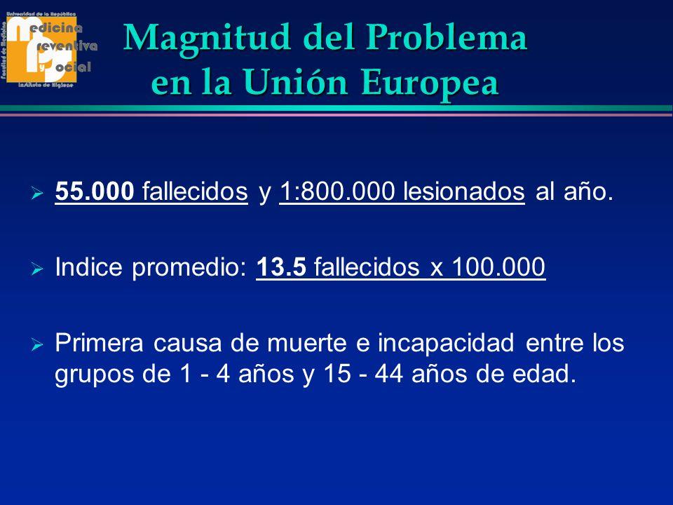 Magnitud del Problema en la Unión Europea 55.000 fallecidos y 1:800.000 lesionados al año. Indice promedio: 13.5 fallecidos x 100.000 Primera causa de