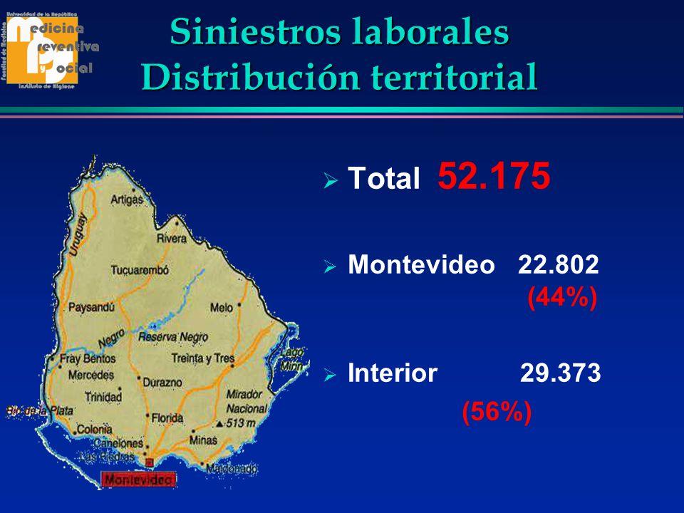 Siniestros laborales Distribución territorial Total 52.175 Montevideo 22.802 (44%) Interior 29.373 (56%)