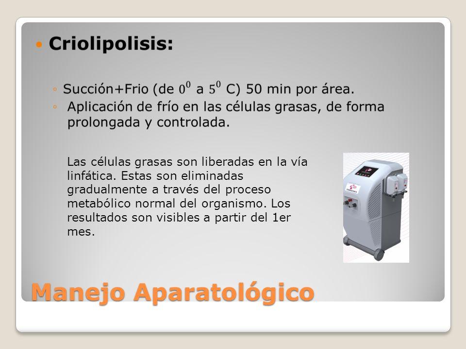 Manejo Aparatológico Las células grasas son liberadas en la vía linfática. Estas son eliminadas gradualmente a través del proceso metabólico normal de
