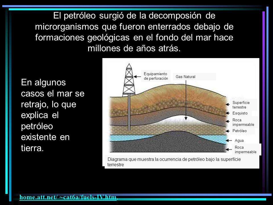 El petróleo surgió de la decomposión de microrganismos que fueron enterrados debajo de formaciones geológicas en el fondo del mar hace millones de años atrás.