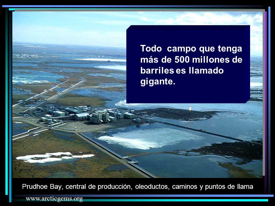 Prudhoe Bay, central de producción, oleoductos, caminos y puntos de llama www.arcticgems.org Todo campo que tenga más de 500 millones de barriles es llamado gigante.