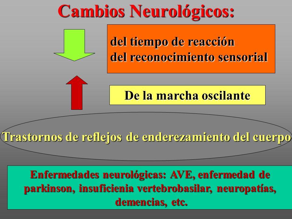 Cambios Neurológicos: del tiempo de reacción del reconocimiento sensorial De la marcha oscilante Trastornos de reflejos de enderezamiento del cuerpo E