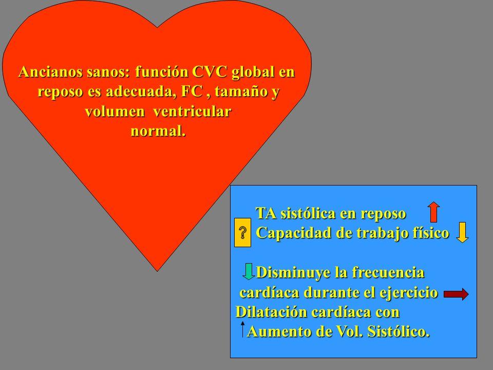 Ancianos sanos: función CVC global en reposo es adecuada, FC, tamaño y reposo es adecuada, FC, tamaño y volumen ventricular volumen ventricular normal
