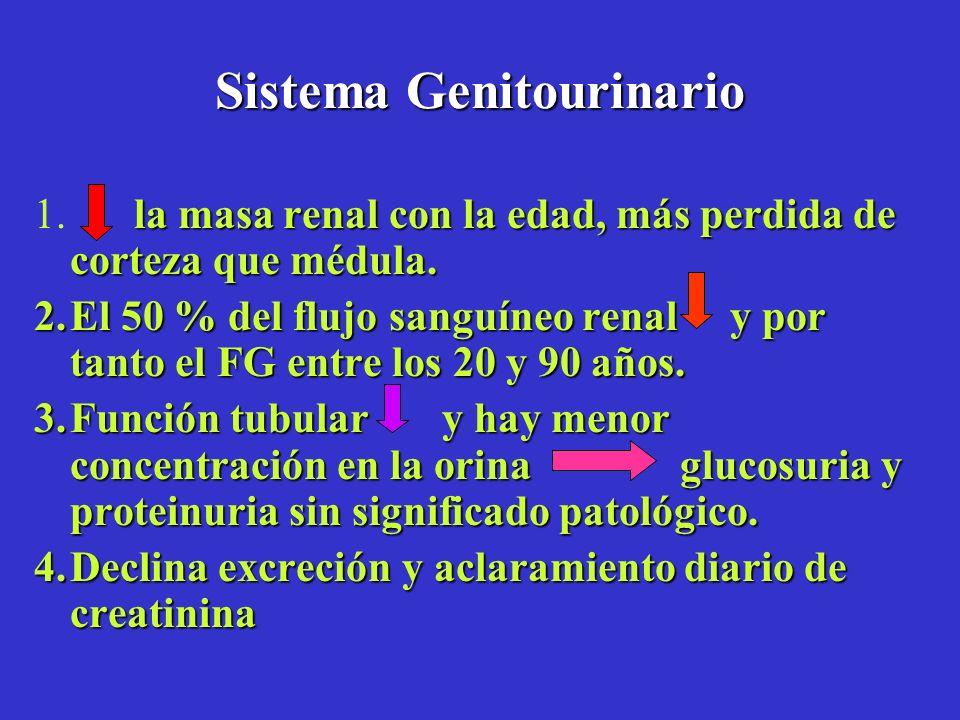 Sistema Genitourinario la masa renal con la edad, más perdida de corteza que médula. 1. la masa renal con la edad, más perdida de corteza que médula.