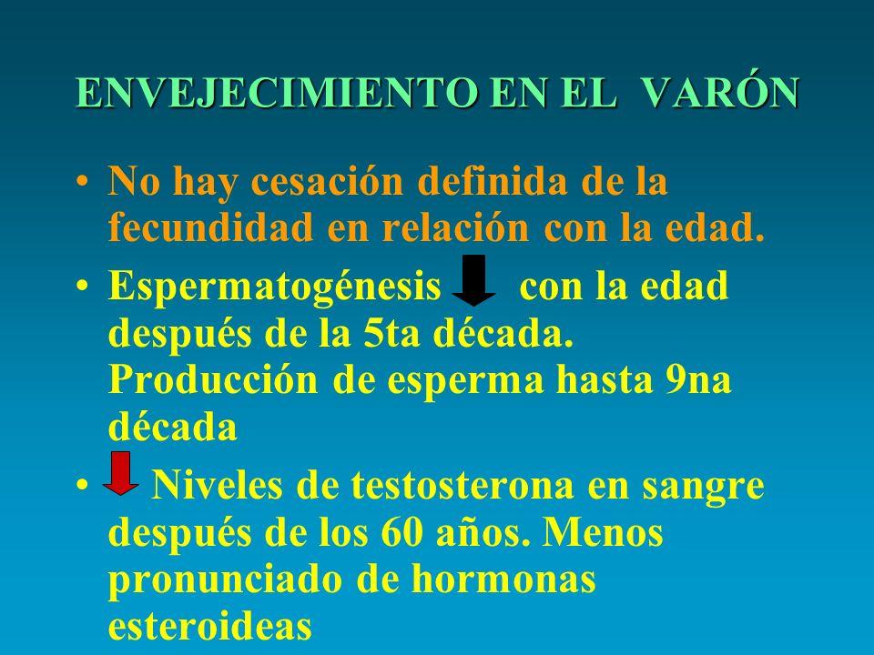 ENVEJECIMIENTO EN EL VARÓN No hay cesación definida de la fecundidad en relación con la edad. Espermatogénesis con la edad después de la 5ta década. P