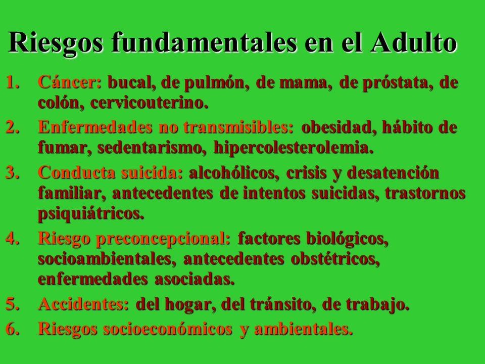 Riesgos fundamentales en el Adulto 1.Cáncer: bucal, de pulmón, de mama, de próstata, de colón, cervicouterino. 2.Enfermedades no transmisibles: obesid