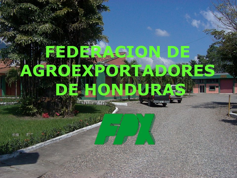 FEDERACION DE AGROEXPORTADORES DE HONDURAS