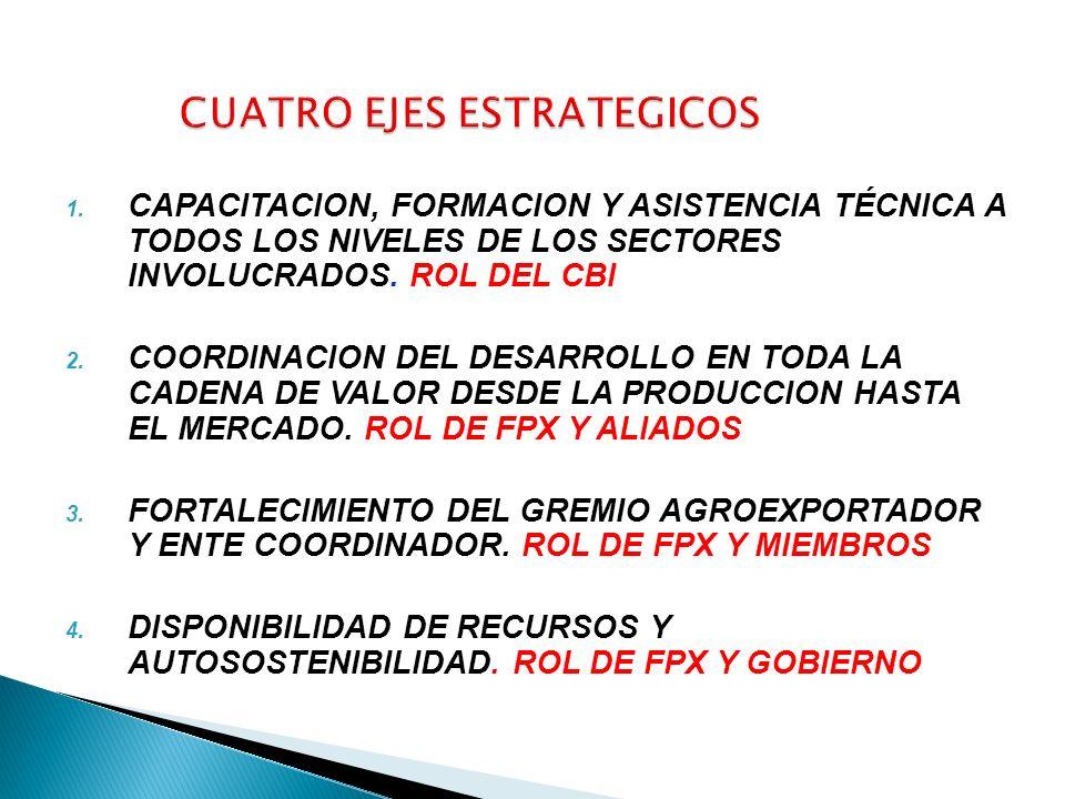 1. CAPACITACION, FORMACION Y ASISTENCIA TÉCNICA A TODOS LOS NIVELES DE LOS SECTORES INVOLUCRADOS. ROL DEL CBI 2. COORDINACION DEL DESARROLLO EN TODA L