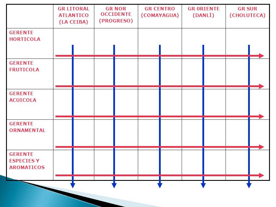 GR LITORAL ATLANTICO (LA CEIBA) GR NOR OCCIDENTE (PROGRESO) GR CENTRO (COMAYAGUA) GR 0RIENTE (DANLÍ) GR SUR (CHOLUTECA) GERENTE HORTICOLA GERENTE FRUT