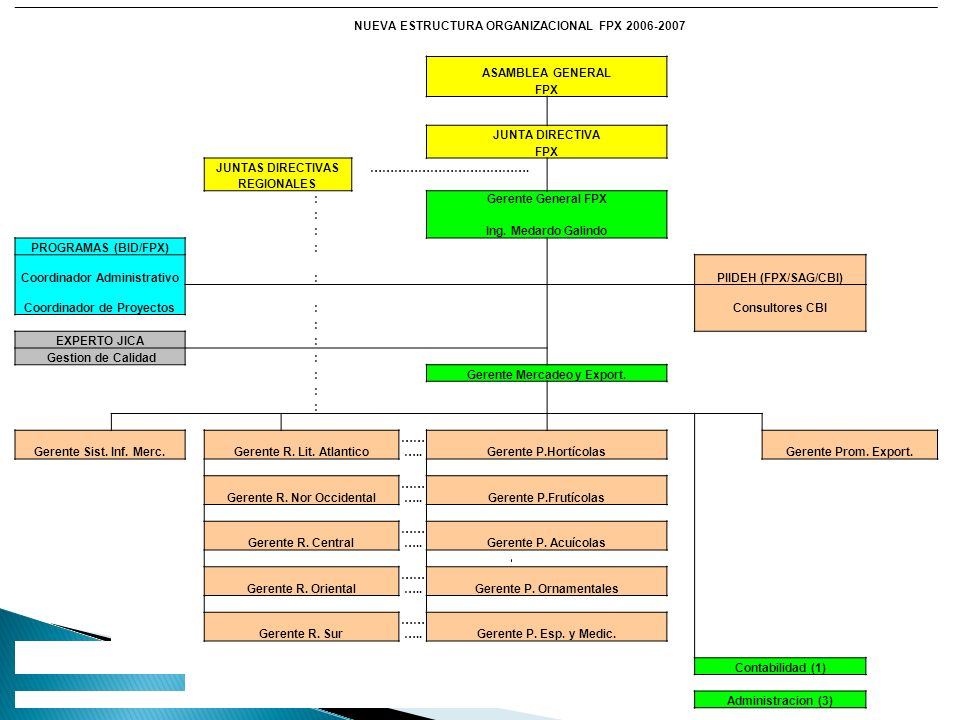 NUEVA ESTRUCTURA ORGANIZACIONAL FPX 2006-2007 ASAMBLEA GENERAL FPX JUNTA DIRECTIVA FPX JUNTAS DIRECTIVAS…………………………………. REGIONALES : Gerente General FP
