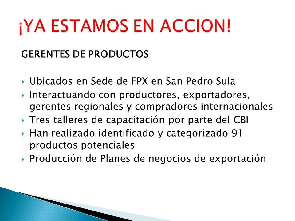 GERENTES DE PRODUCTOS Ubicados en Sede de FPX en San Pedro Sula Interactuando con productores, exportadores, gerentes regionales y compradores interna