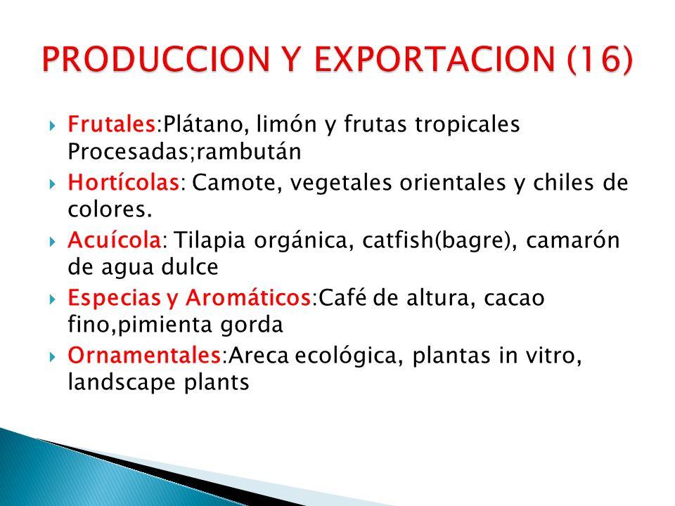 Frutales:Plátano, limón y frutas tropicales Procesadas;rambután Hortícolas: Camote, vegetales orientales y chiles de colores. Acuícola: Tilapia orgáni